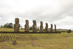 The typical Moai are place on an ahu