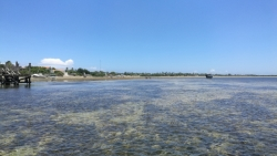 Leaving Ibo Island