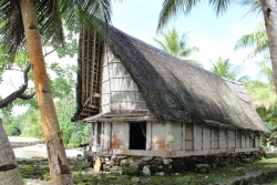 Traditional man-house