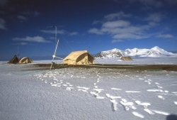 White operating tent