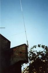 HF6V Butternut vertical